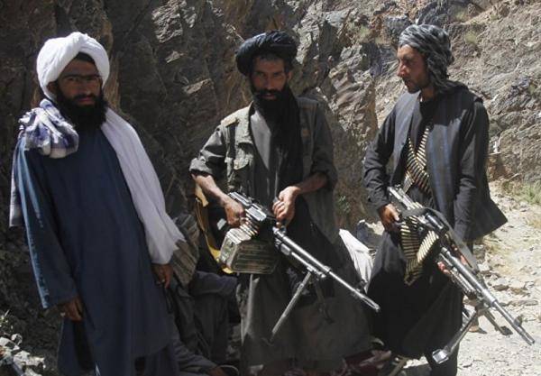 طالبان: دولت کابل وسیله ای برای پیشبرد اهداف خارجی ها در افغانستان است