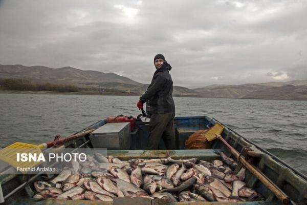 صید ماهی در منابع آبی به وسیله 420صیاد کردستانی